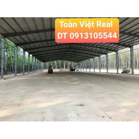 Cho thuê kho quận 7 diện tích 1500m2 khu vực Tân Thuận Đông