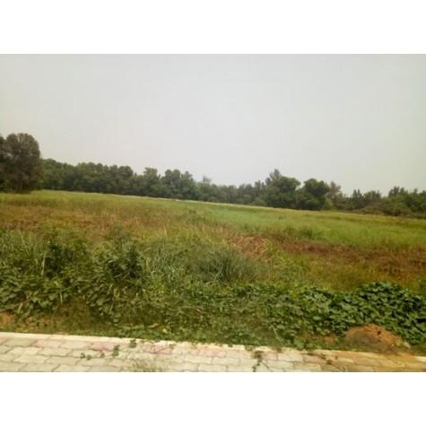 Cần thuê đất làm nhà xưởng liên hệ công ty Toàn Việt Real