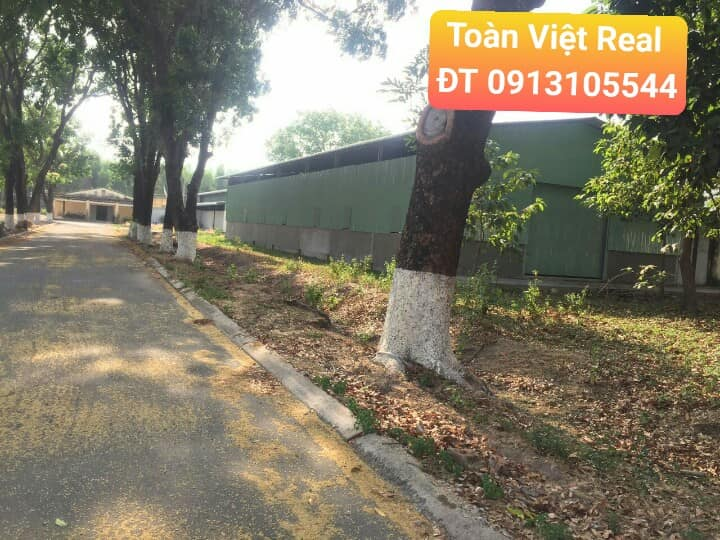 kho xưởng cho thuê tại Đồng Nai 1000m2